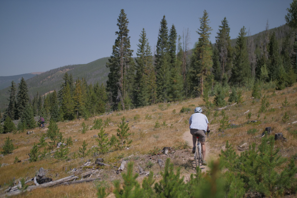 Reids Environment Pledge 1 - Reid ® - Reid's Environmental Pledge – One Year On...