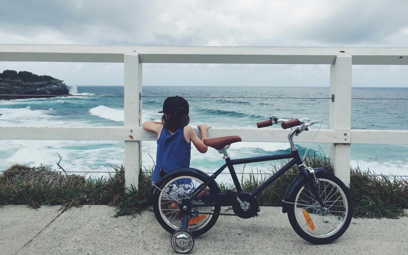 11 15 - Reid ® - Boys Roadster 16″ Bike