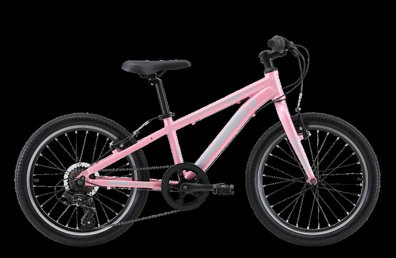 "16 10 - Reid ® - Viper 20"" Bike"