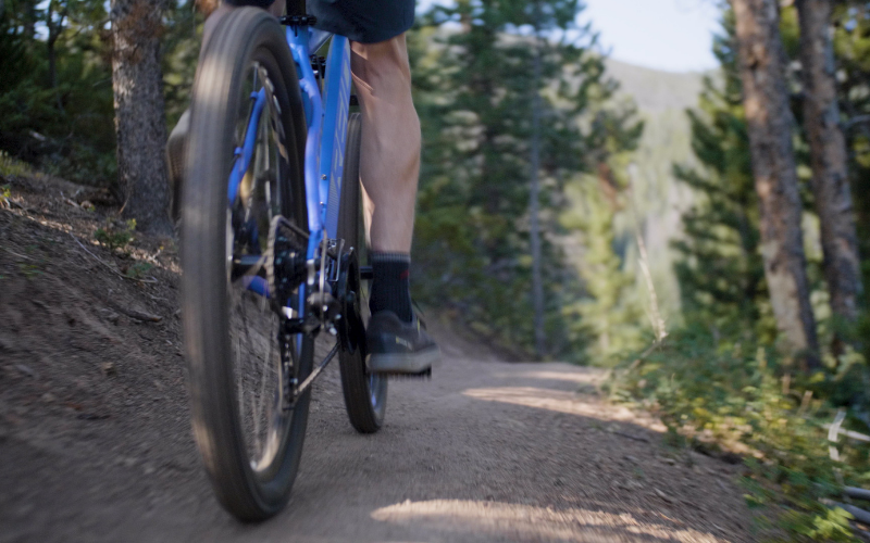 50 2 - Reid ® - MTB Pro Disc Bike