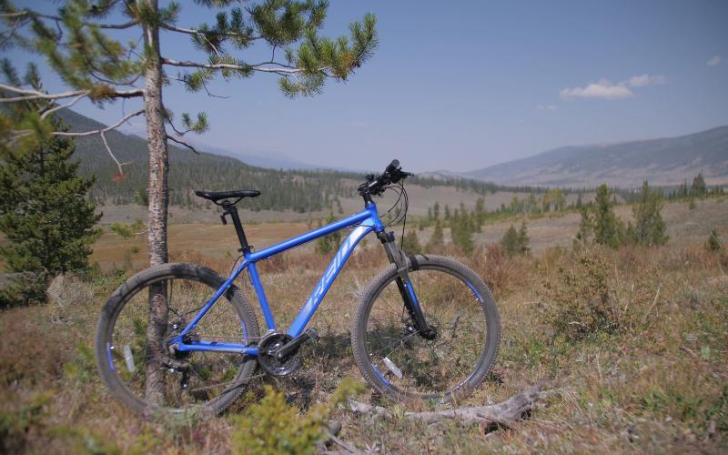 51 3 - Reid ® - MTB Pro Disc Bike