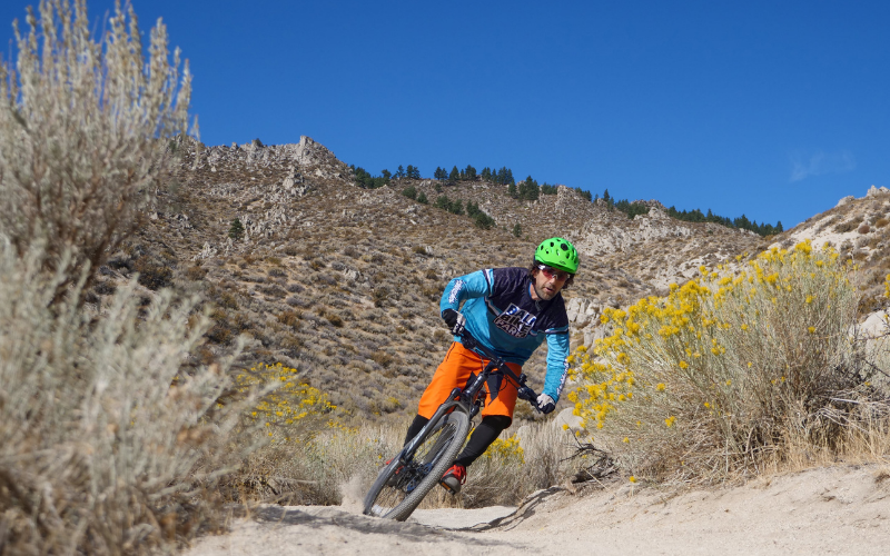 53 3 - Reid ® - MTB Pro Disc Bike