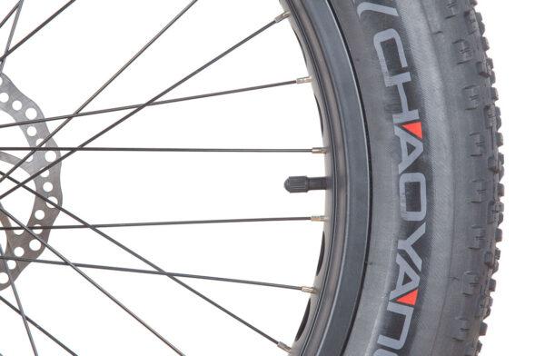 """Titan 24"""" with huge 24 x 4.0 tyres"""