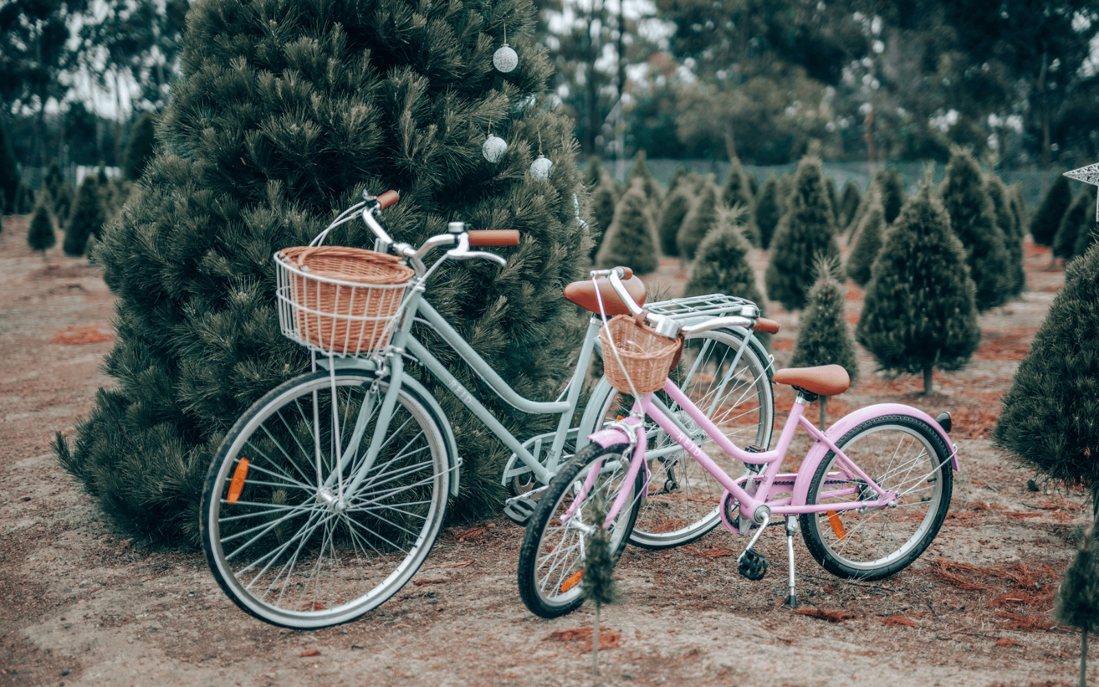 "Kids Lifestyle 9 1 - Reid ® - Girls Classic 20"" Bike"