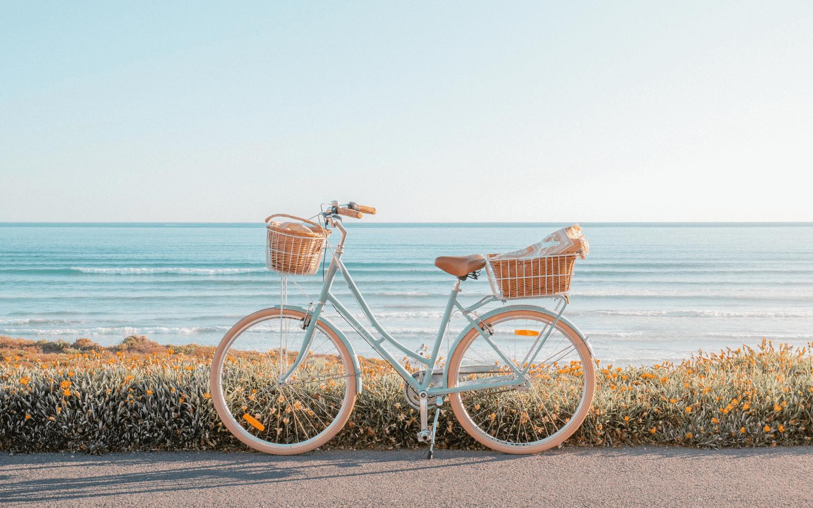 Lifestyle Images Vintage 3 1 - Reid ® - Ladies Deluxe 3-Speed Bike
