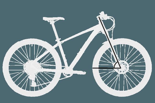 base bike HEAD TUBE ANGLE 2 - Reid ® - MTB Pro Disc Bike