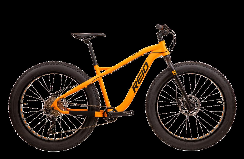 1170x764 6 - Reid ® - Zeus Bike
