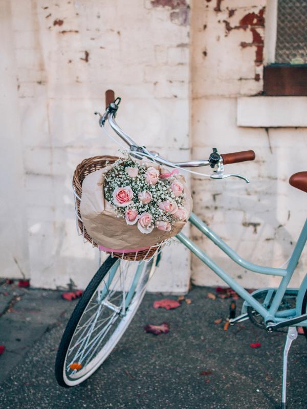 Copy of Copy of Vintage Bike Guide 11 - Reid ® - Reid's Guide To Vintage Bikes