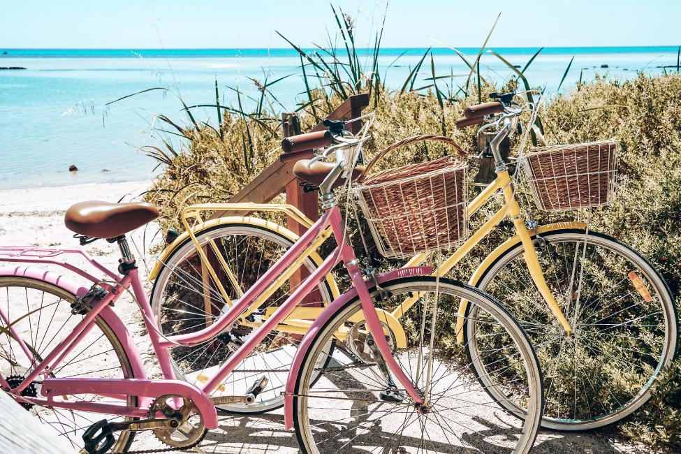 Vintage Bike Guide 3 - Reid ® - Reid's Guide To Vintage Bikes