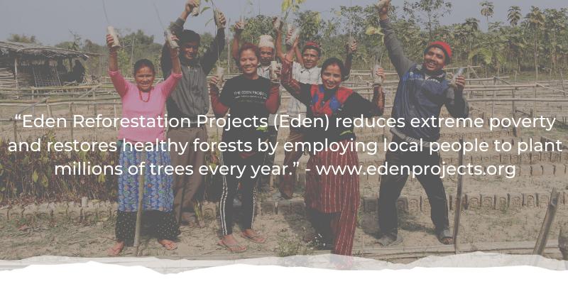 Trees Single Image 5 - Reid ® - Landmark achievement - 100,000 trees planted!